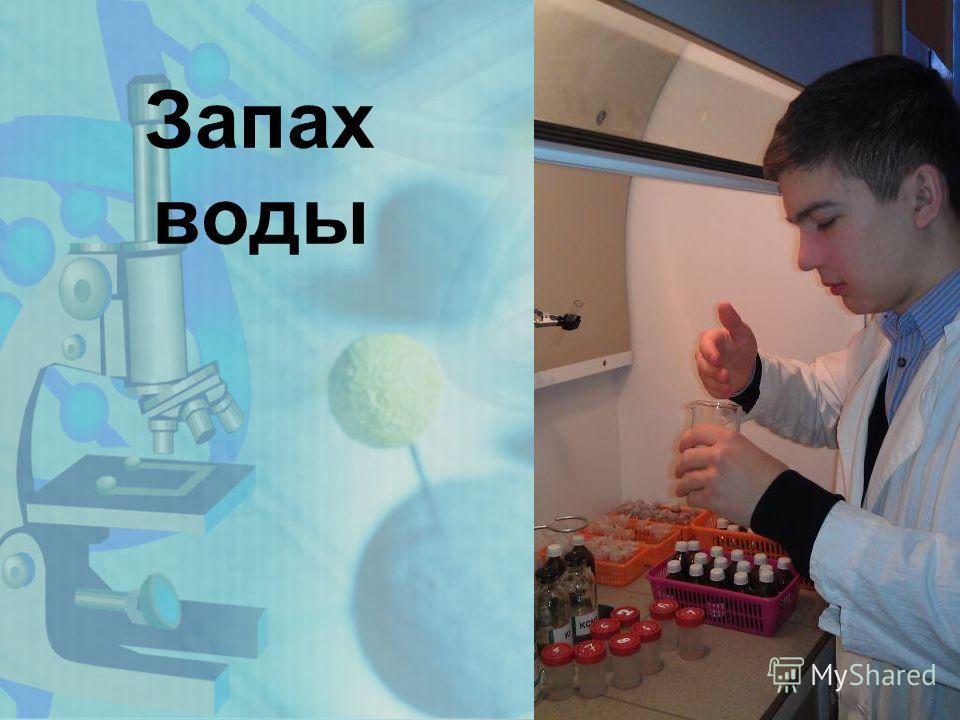 www.themegallery.com Запах воды