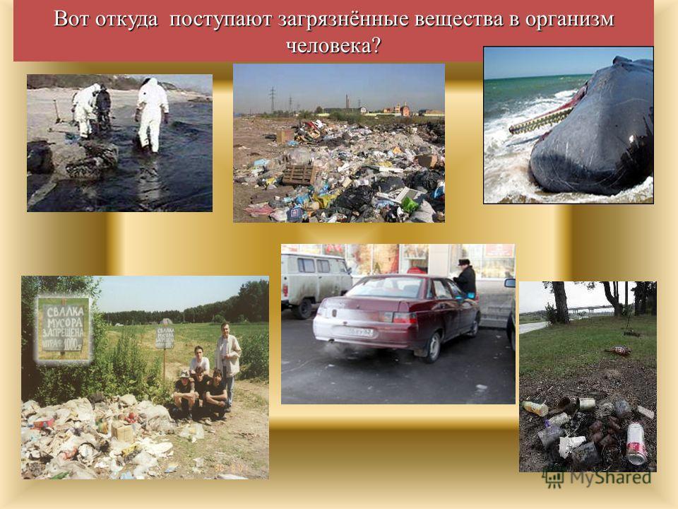 Вот откуда поступают загрязнённые вещества в организм человека?