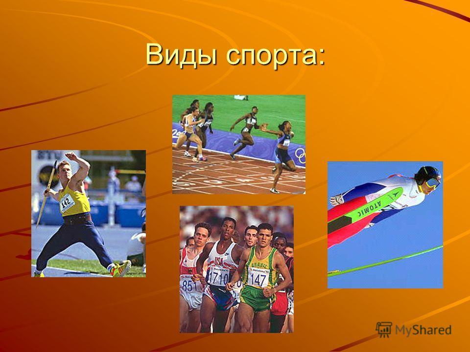 Виды спорта:
