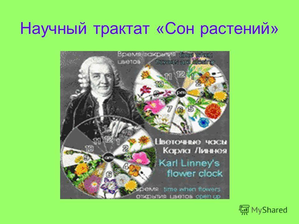 Научный трактат «Сон растений»
