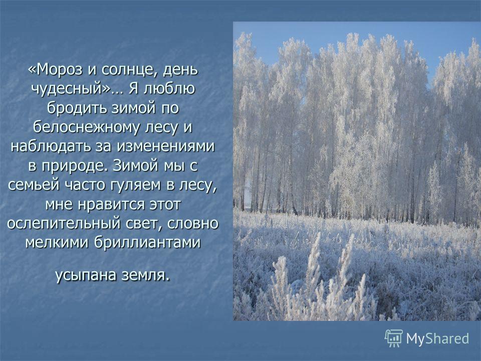 «Мороз и солнце, день чудесный»… Я люблю бродить зимой по белоснежному лесу и наблюдать за изменениями в природе. Зимой мы с семьей часто гуляем в лесу, мне нравится этот ослепительный свет, словно мелкими бриллиантами усыпана земля.