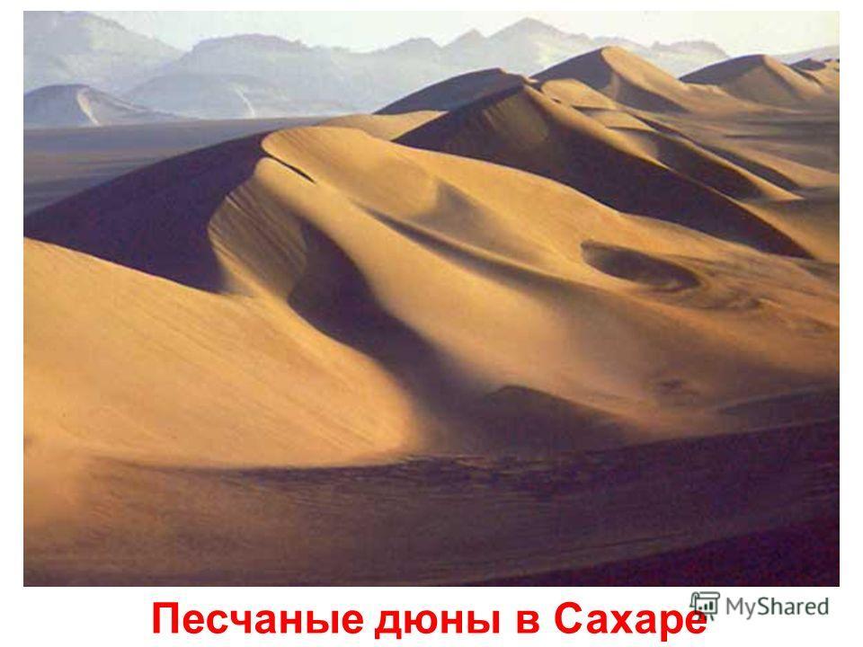 Озеро Байкал Озеро байкал.