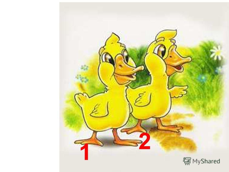 Два хорошеньких утёнка Повстречали три цыплёнка.