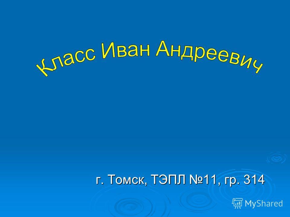 г. Томск, ТЭПЛ 11, гр. 314
