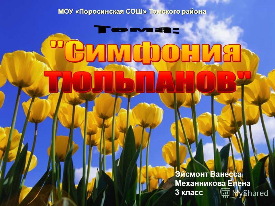МОУ «Поросинская СОШ» Томского района Эйсмонт Ванесса Механникова Елена 3 класс