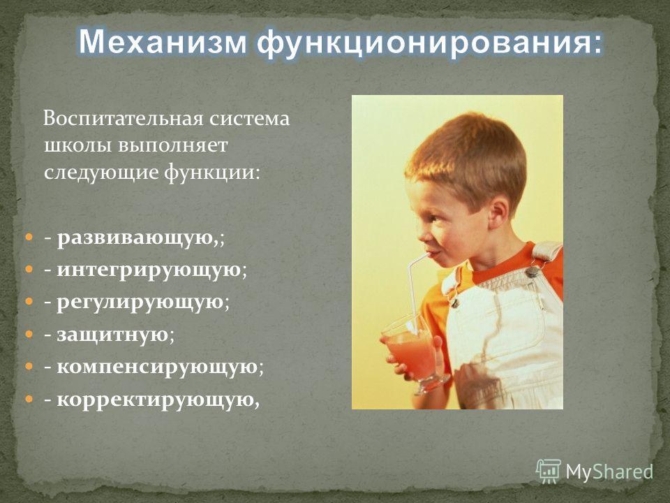 Воспитательная система школы выполняет следующие функции: - развивающую,; - интегрирующую; - регулирующую; - защитную; - компенсирующую; - корректирующую,
