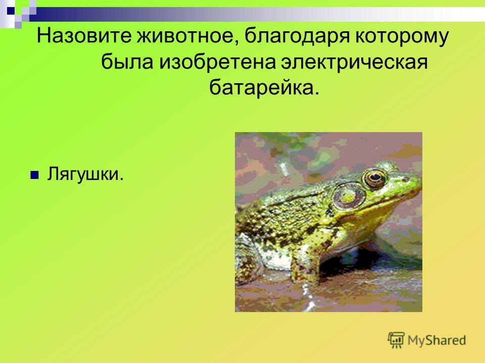 Назовите животное, благодаря которому была изобретена электрическая батарейка. Лягушки.