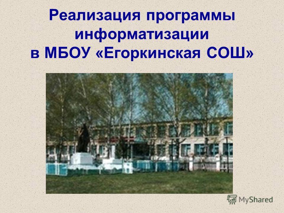 Реализация программы информатизации в МБОУ «Егоркинская СОШ»