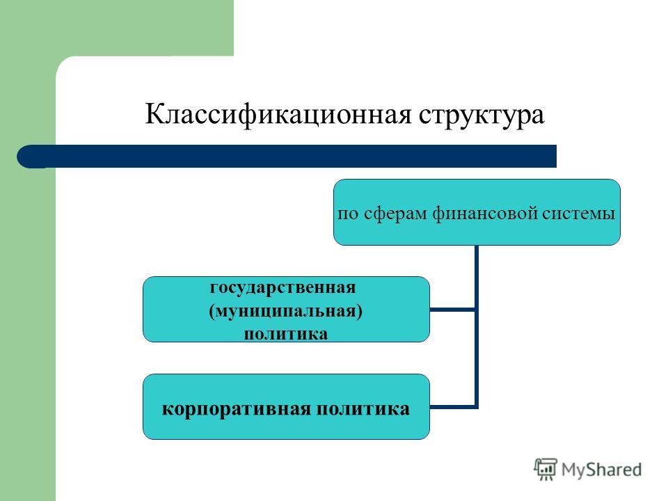 Классификационная структура по сферам финансовой системы государственная (муниципальная) политика корпоративная политика