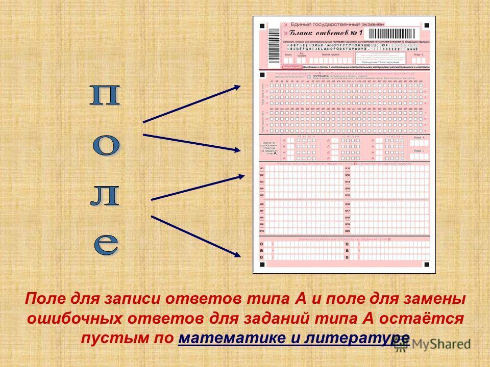 Поле для записи ответов типа А и поле для замены ошибочных ответов для заданий типа А остаётся пустым по математике и литературе