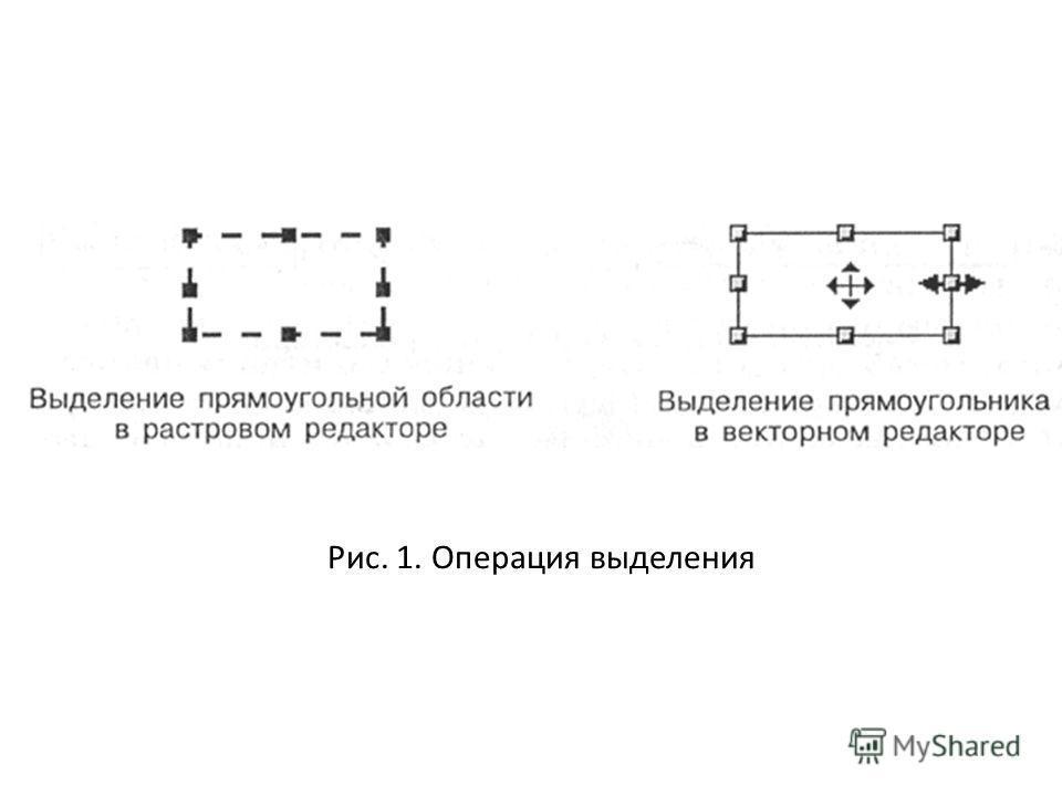 Рис. 1. Операция выделения