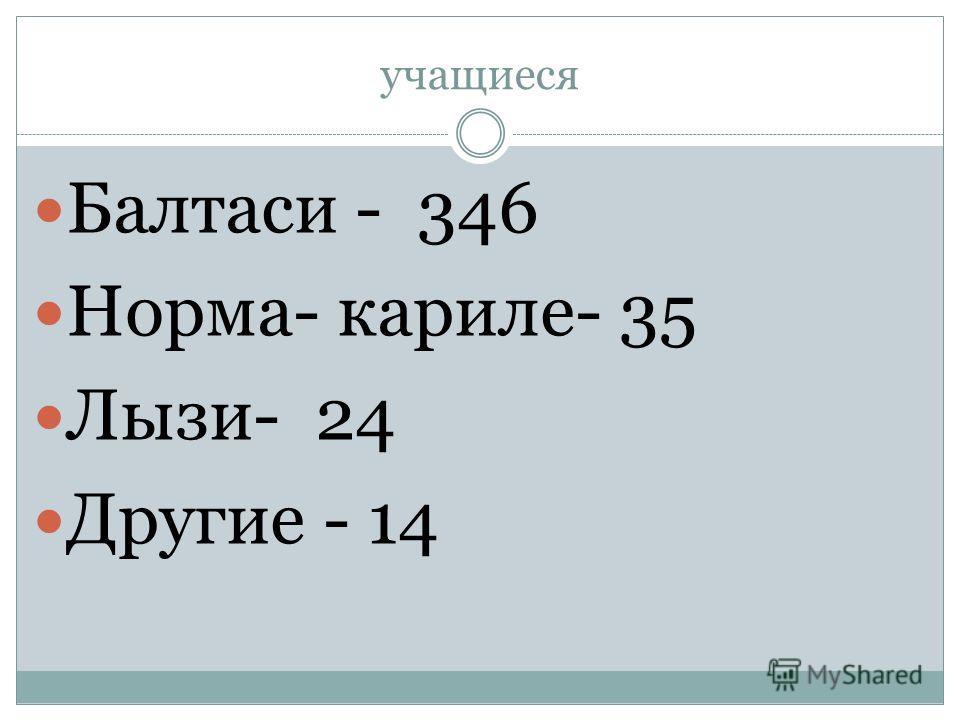 учащиеся Балтаси - 346 Норма- кариле- 35 Лызи- 24 Другие - 14
