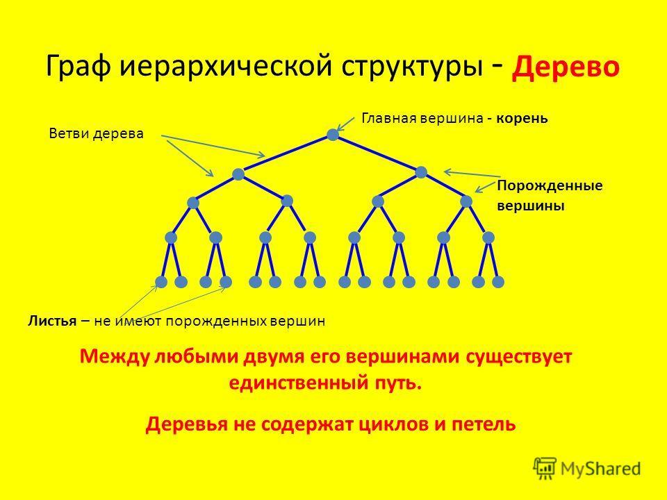 Граф иерархической структуры - Между любыми двумя его вершинами существует единственный путь. Дерево Деревья не содержат циклов и петель Главная вершина - корень Ветви дерева Порожденные вершины Листья – не имеют порожденных вершин