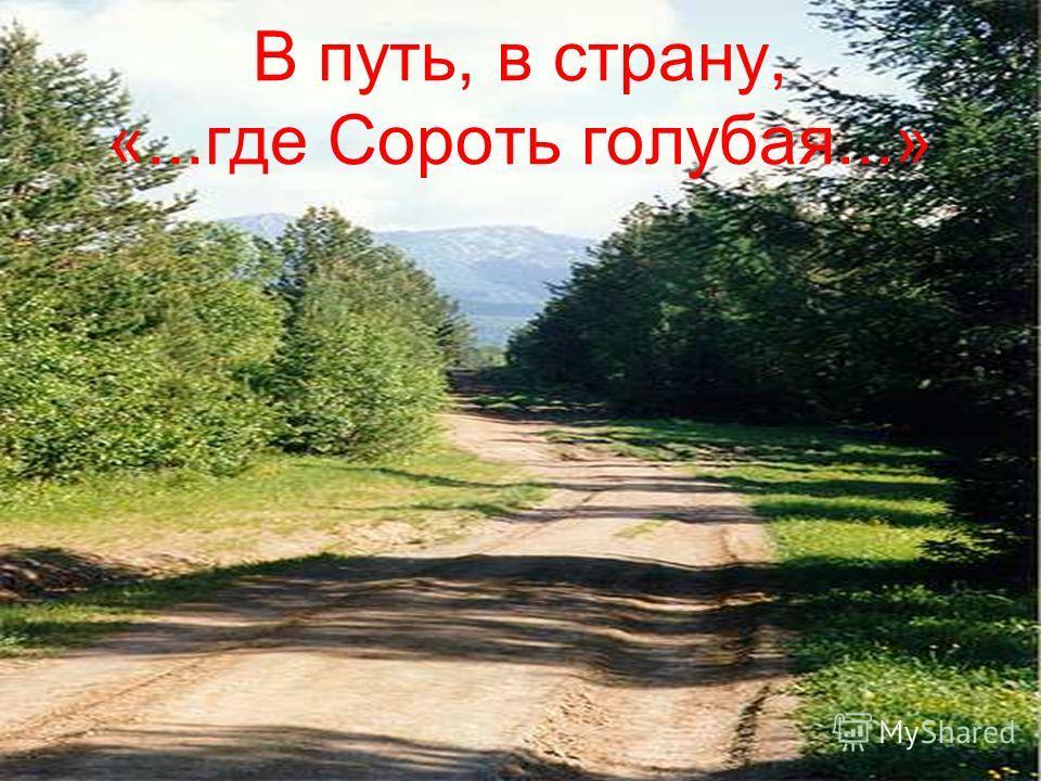 В путь, в страну, «...где Сороть голубая...»