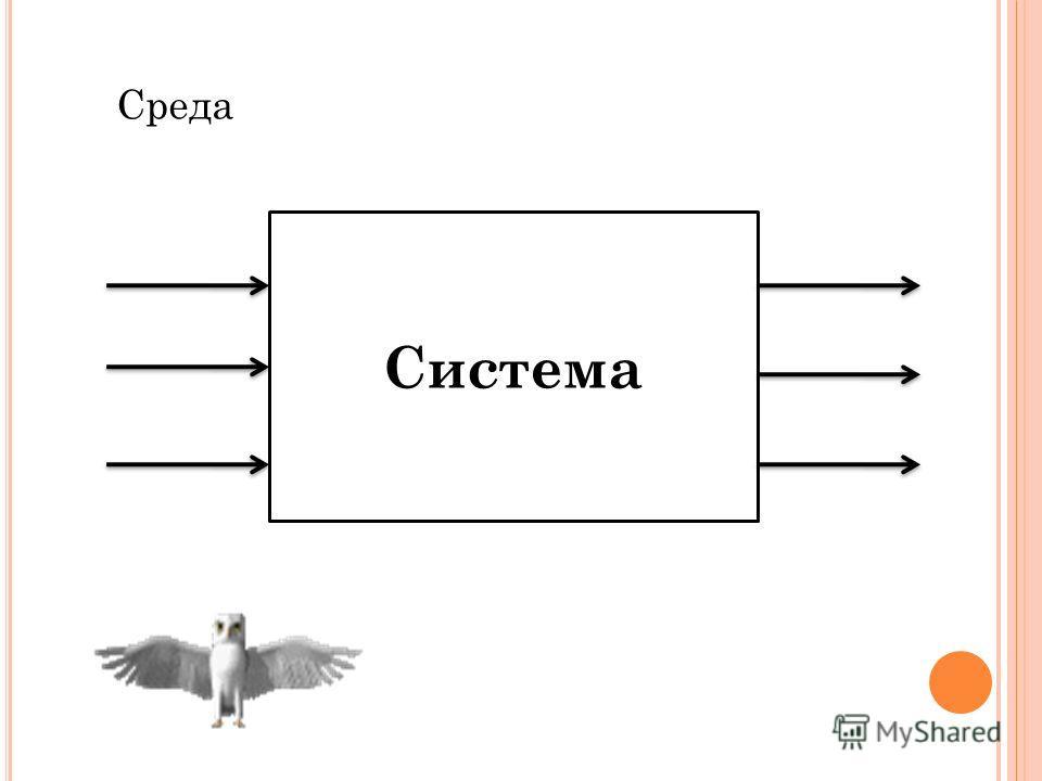 Система Среда