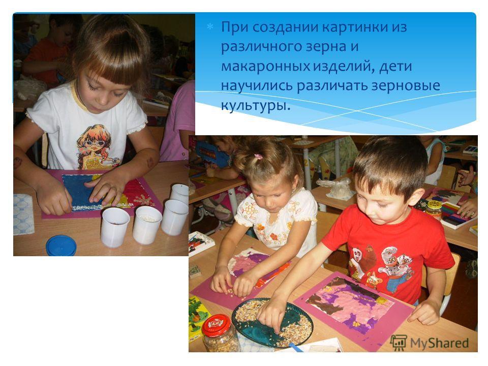 При создании картинки из различного зерна и макаронных изделий, дети научились различать зерновые культуры.