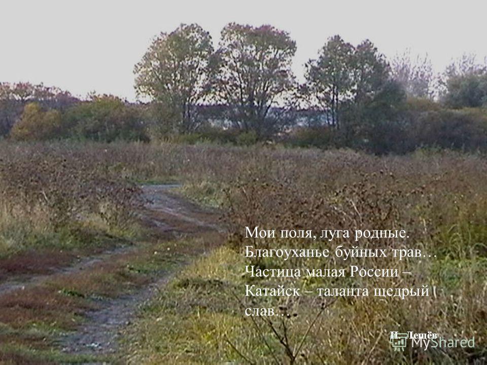 Мои поля, луга родные. Благоуханье буйных трав… Частица малая России – Катайск – таланта щедрый слав… И. Лещёв