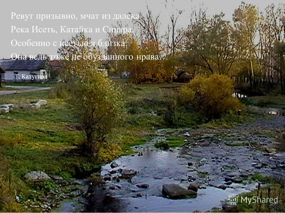 Ревут призывно, мчат из далека Река Исеть, Катайка и Синара. Особенно с исетью я близка: Она ведь тоже не обузданного нрава… Т. Калугина