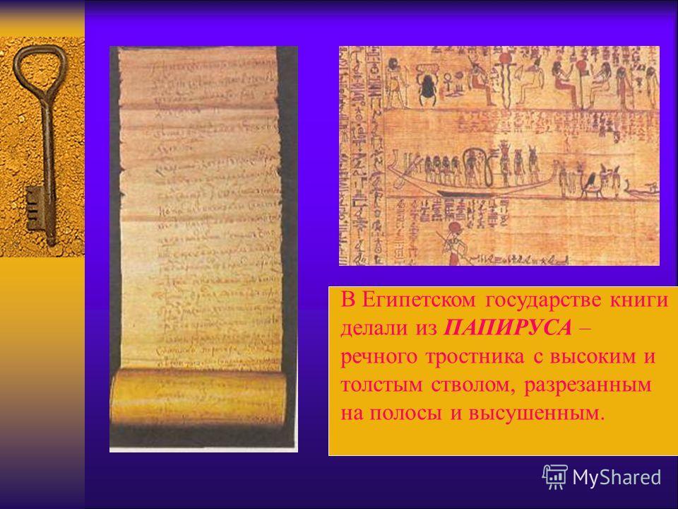 В Египетском государстве книги делали из ПАПИРУСА – речного тростника с высоким и толстым стволом, разрезанным на полосы и высушенным.