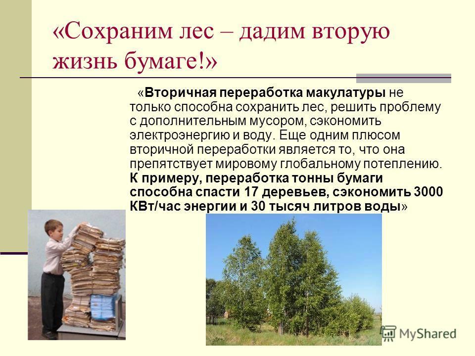 «Сохраним лес – дадим вторую жизнь бумаге!» «Вторичная переработка макулатуры не только способна сохранить лес, решить проблему с дополнительным мусором, сэкономить электроэнергию и воду. Еще одним плюсом вторичной переработки является то, что она пр