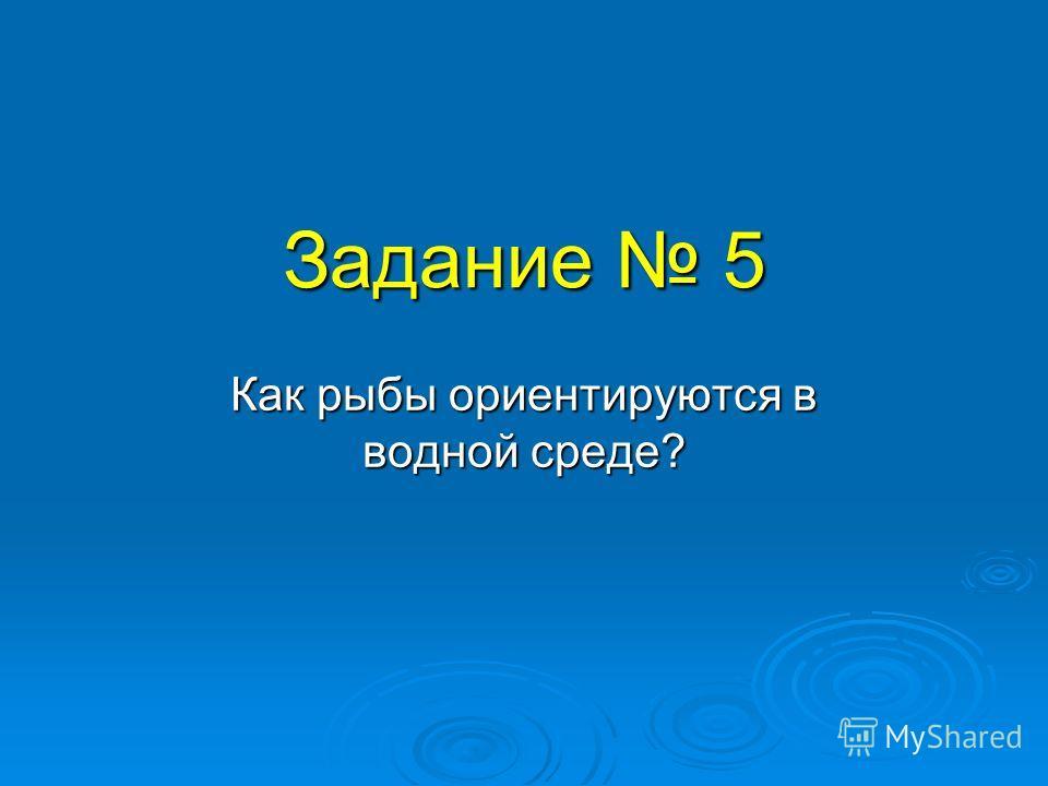 Задание 5 Как рыбы ориентируются в водной среде?