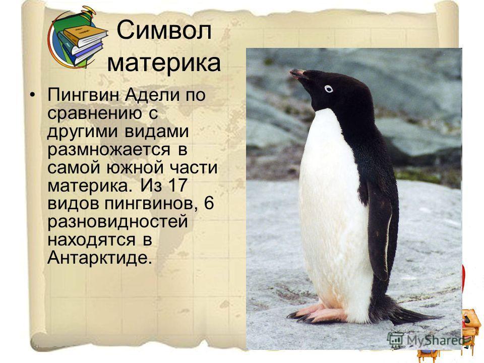 Символ материка Пингвин Адели по сравнению с другими видами размножается в самой южной части материка. Из 17 видов пингвинов, 6 разновидностей находятся в Антарктиде.