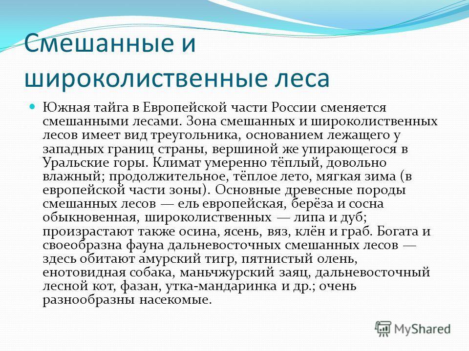 Смешанные и широколиственные леса Южная тайга в Европейской части России сменяется смешанными лесами. Зона смешанных и широколиственных лесов имеет вид треугольника, основанием лежащего у западных границ страны, вершиной же упирающегося в Уральские г
