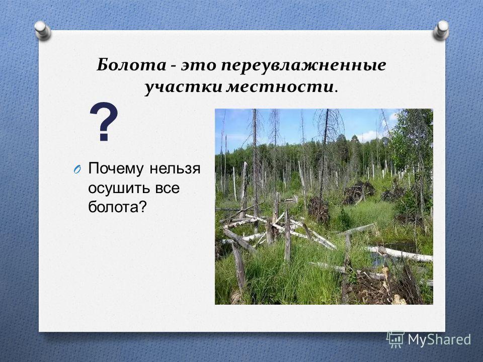 Болота - это переувлажненные участки местности. ? O Почему нельзя осушить все болота ?