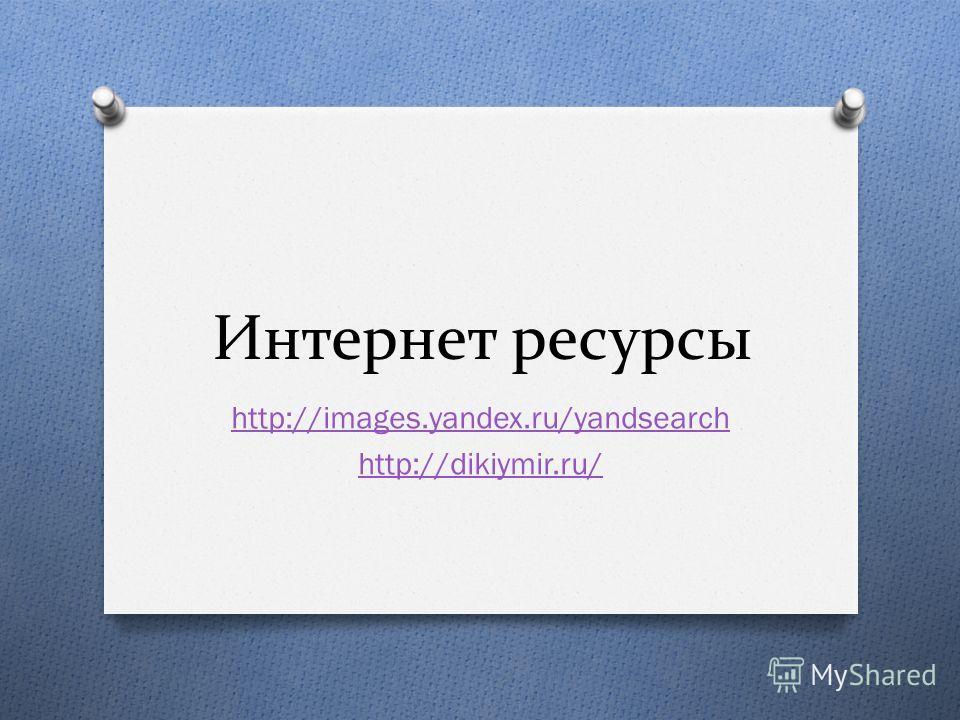 Интернет ресурсы http://images.yandex.ru/yandsearch http://dikiymir.ru/