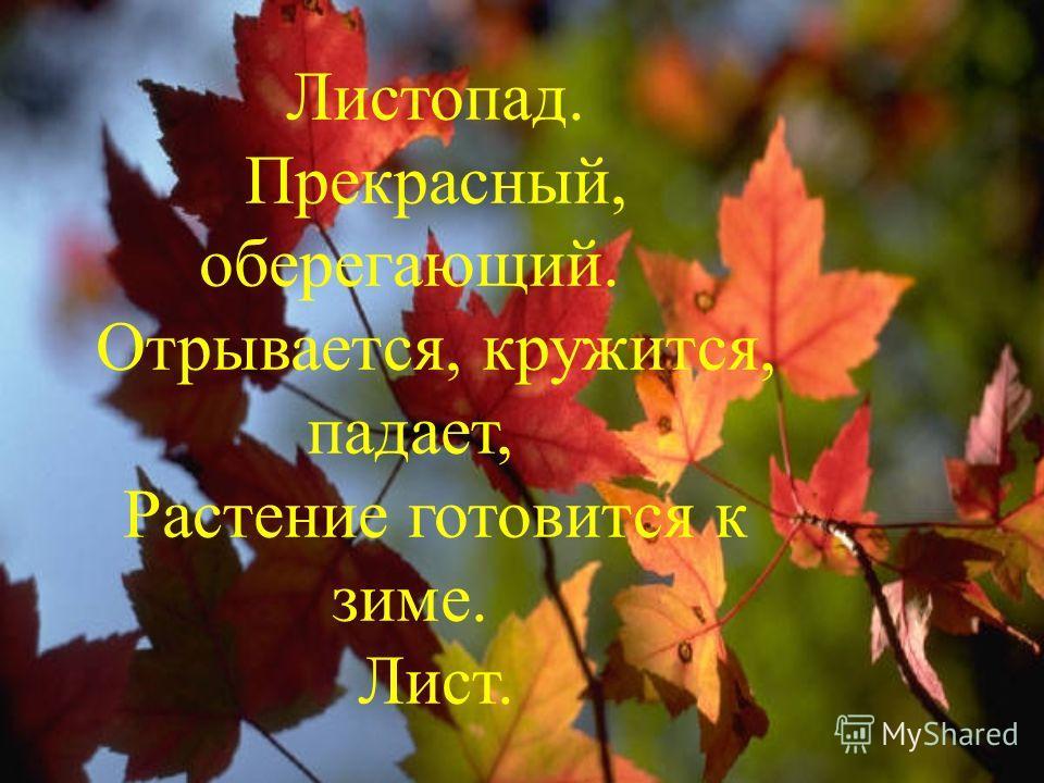 Листопад. Прекрасный, оберегающий. Отрывается, кружится, падает, Растение готовится к зиме. Лист.