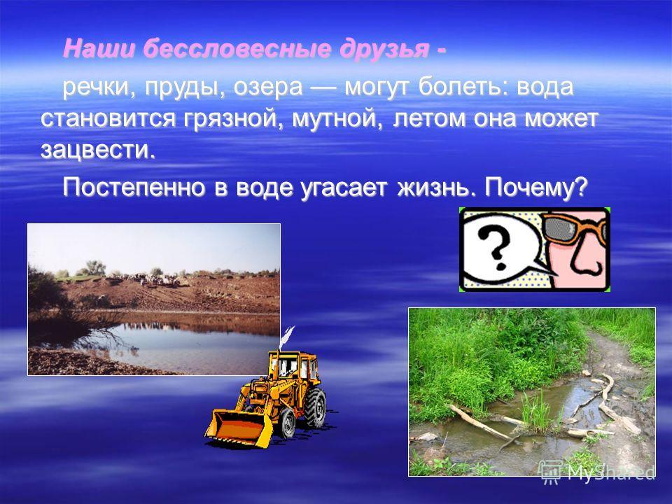 Реки разделяются на категории по: Характеру течения (горные и равнинные); Характеру течения (горные и равнинные); Питанию (дождевое, снеговое, подземное); Питанию (дождевое, снеговое, подземное); Режиму (с весенним и летним половодьем). Режиму (с вес