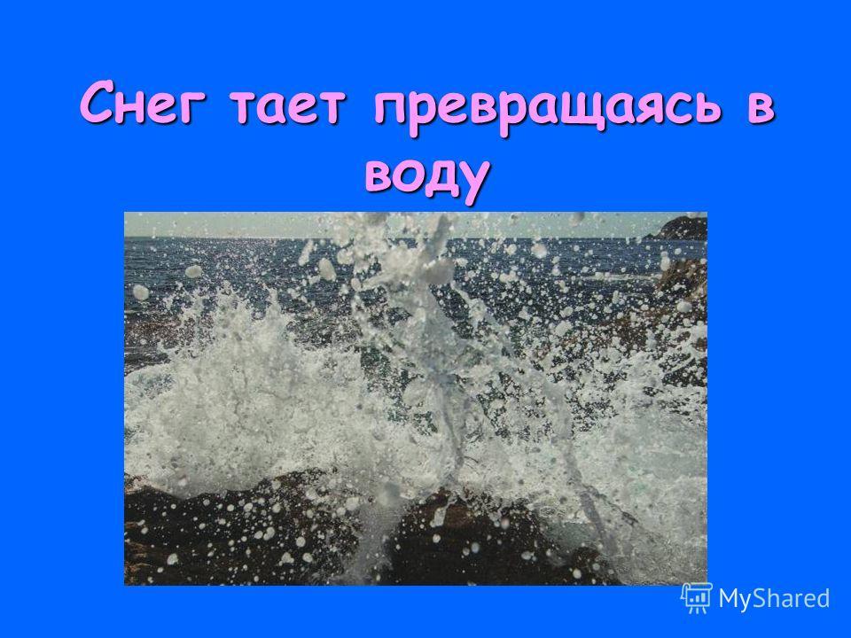 Снег тает превращаясь в воду