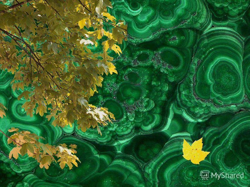 Зеленый наря_ радует взгля_