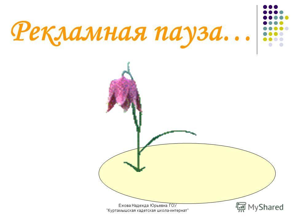 Ежова Надежда Юрьевна ГОУ Куртамышская кадетская школа-интернат Рекламная пауза…
