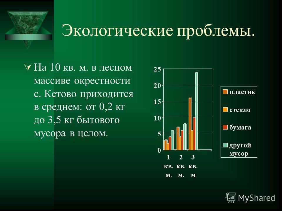 Экологические проблемы. На 10 кв. м. в лесном массиве окрестности с. Кетово приходится в среднем: от 0,2 кг до 3,5 кг бытового мусора в целом.