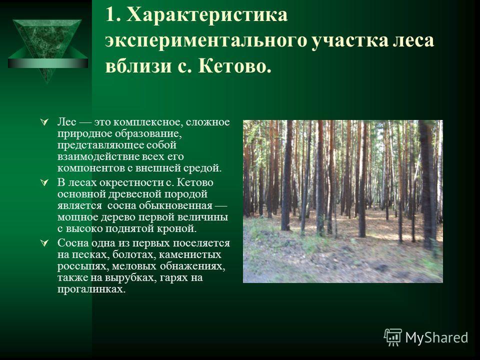 1. Характеристика экспериментального участка леса вблизи с. Кетово. Лес это комплексное, сложное природное образование, представляющее собой взаимодействие всех его компонентов с внешней средой. В лесах окрестности с. Кетово основной древесной породо