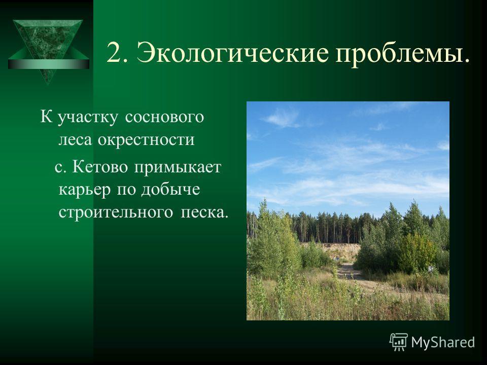 2. Экологические проблемы. К участку соснового леса окрестности с. Кетово примыкает карьер по добыче строительного песка.