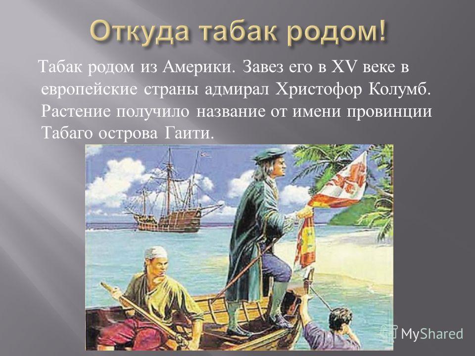 Табак родом из Америки. Завез его в Х V веке в европейские страны адмирал Христофор Колумб. Растение получило название от имени провинции Табаго острова Гаити.