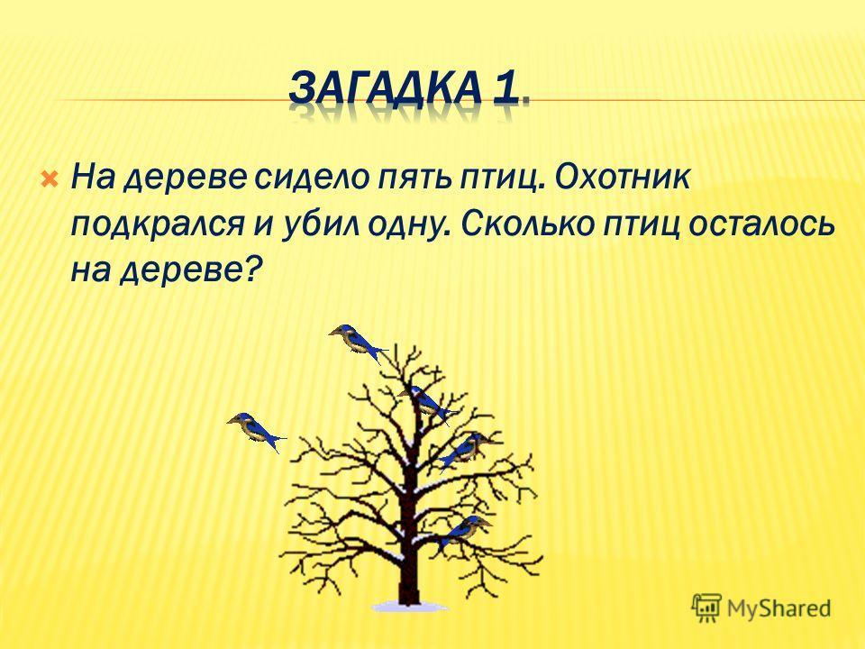 На дереве сидело пять птиц. Охотник подкрался и убил одну. Сколько птиц осталось на дереве?