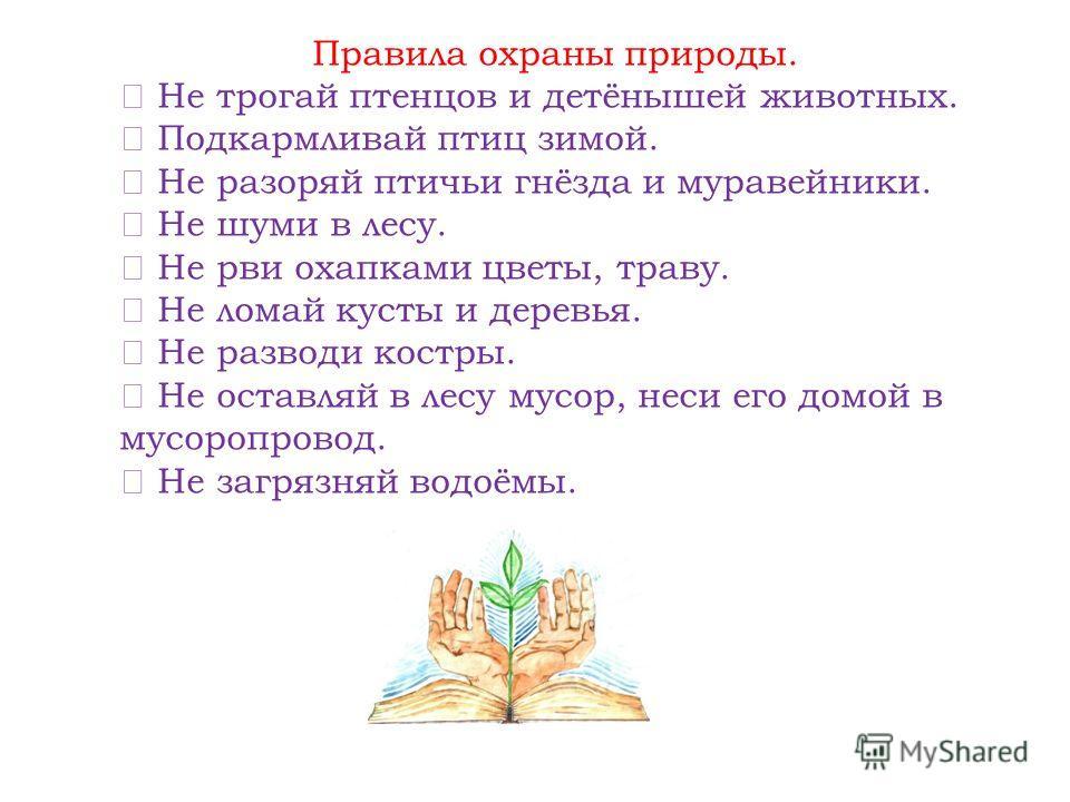 В труде не будь ленивым, По совести живи, Старайся быть счастливым Природу береги!