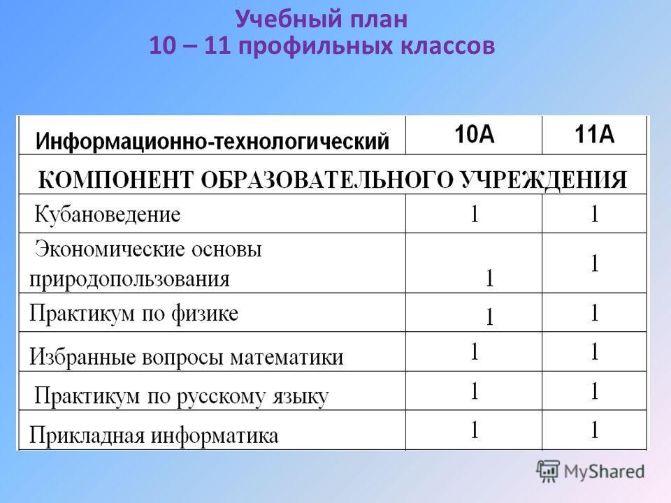 Учебный план 10 – 11 профильных классов