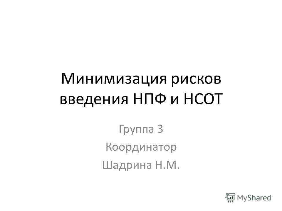 Минимизация рисков введения НПФ и НСОТ Группа 3 Координатор Шадрина Н.М.
