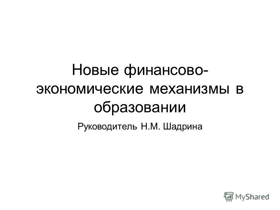 Новые финансово- экономические механизмы в образовании Руководитель Н.М. Шадрина