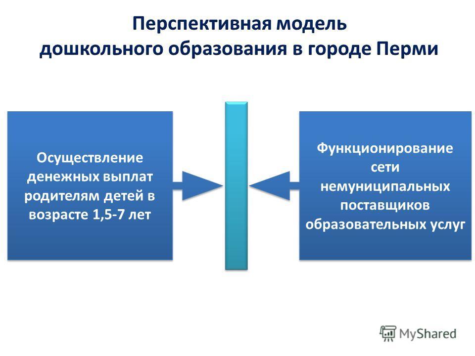 Осуществление денежных выплат родителям детей в возрасте 1,5-7 лет Функционирование сети немуниципальных поставщиков образовательных услуг