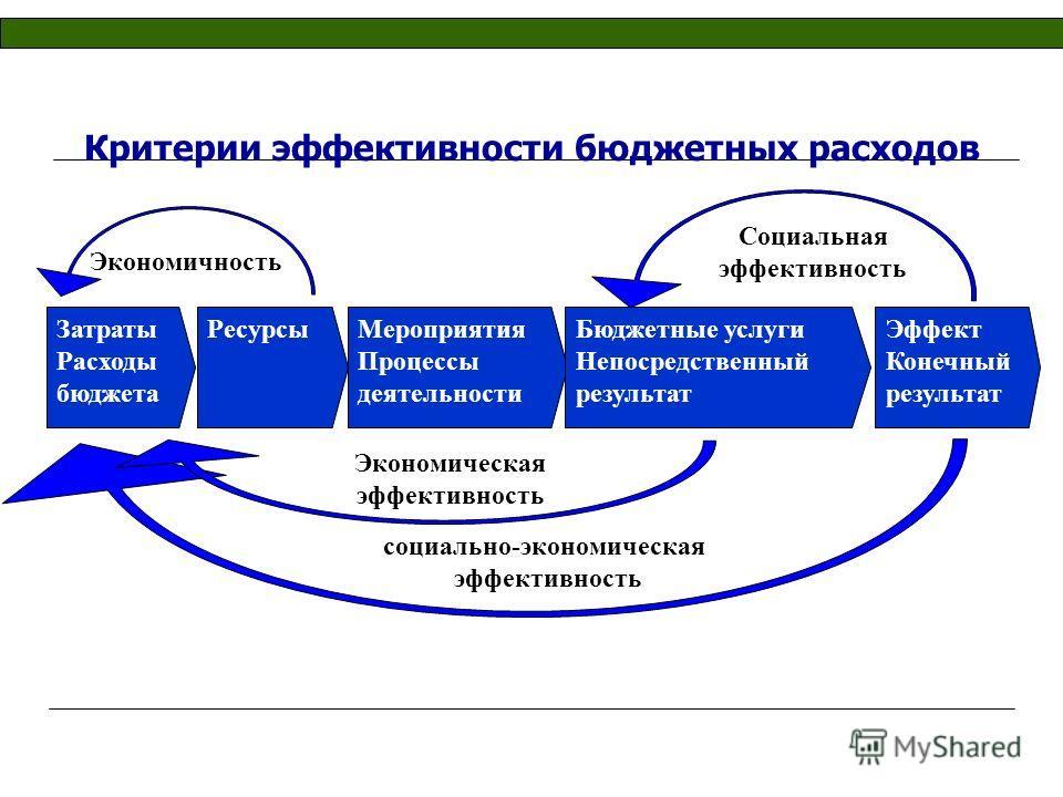 Критерии эффективности бюджетных расходов социально-экономическая эффективность Затраты Расходы бюджета РесурсыМероприятия Процессы деятельности Бюджетные услуги Непосредственный результат Экономичность Социальная эффективность Экономическая эффектив