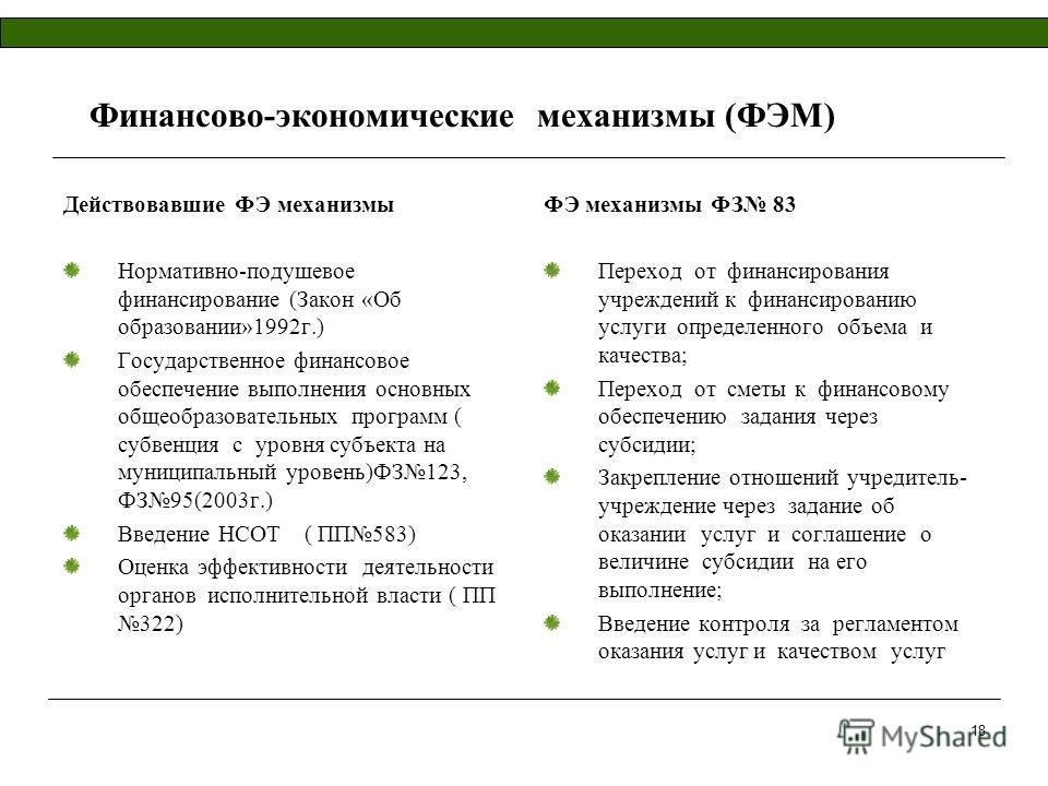 18 Финансово-экономические механизмы (ФЭМ) Действовавшие ФЭ механизмы Нормативно-подушевое финансирование (Закон «Об образовании»1992г.) Государственное финансовое обеспечение выполнения основных общеобразовательных программ ( субвенция с уровня субъ