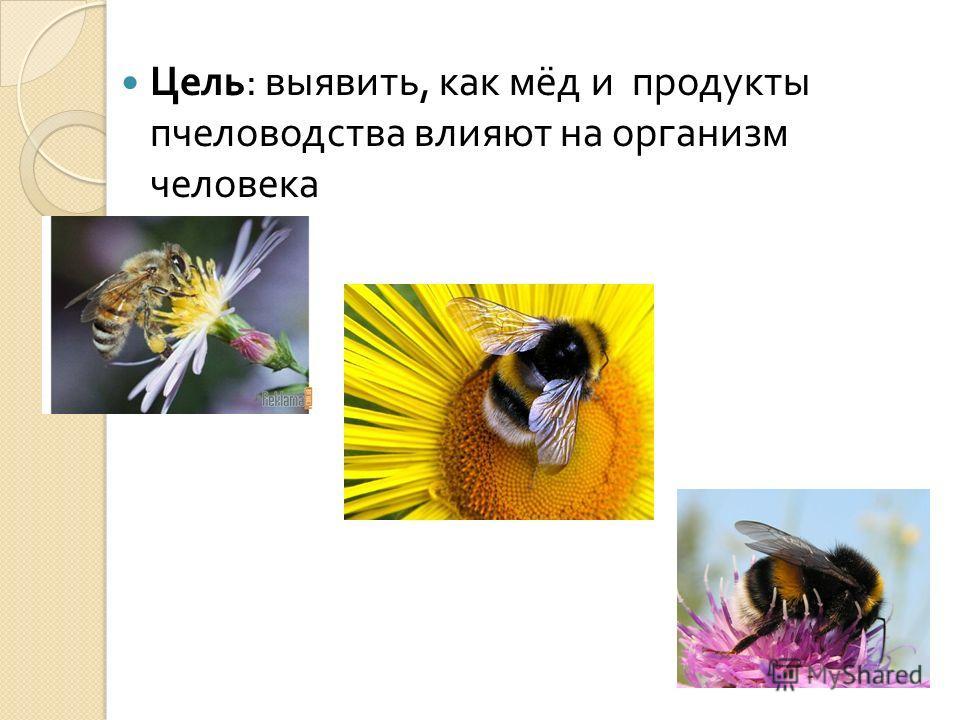 Цель : выявить, как мёд и продукты пчеловодства влияют на организм человека