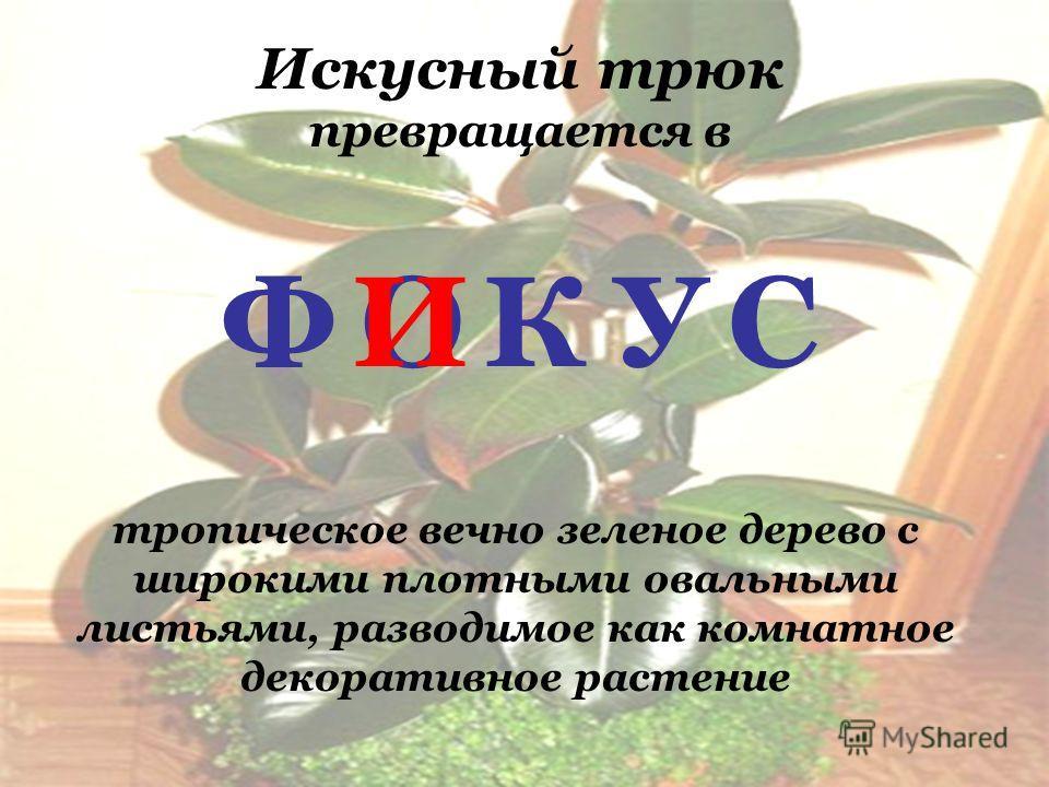 ПЕРЕВЁРТЫШИ Переставьте, добавьте, уберите или замените в слове ровно по одной букве, чтобы получилось биологическое название (рыбы, растения, животного и т.д.)