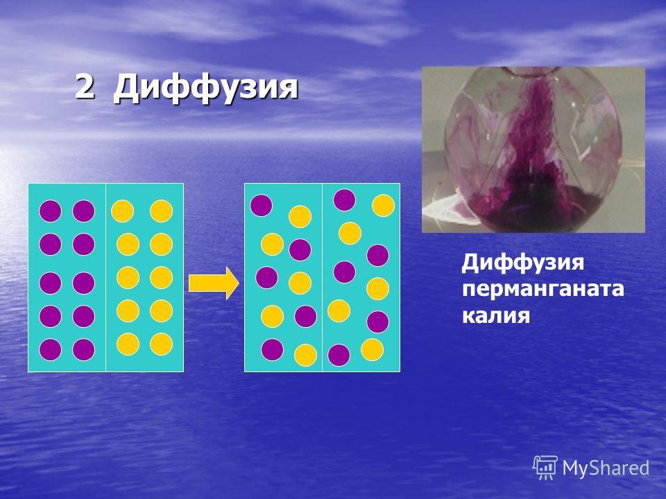 2 Диффузия Диффузия перманганата калия