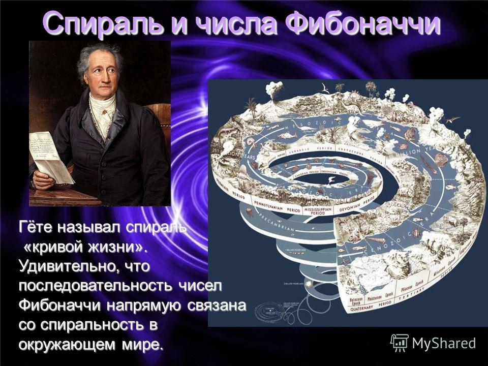 Спираль и числа Фибоначчи Гёте называл спираль «кривой жизни». «кривой жизни». Удивительно, что последовательность чисел Фибоначчи напрямую связана со спиральность в окружающем мире.